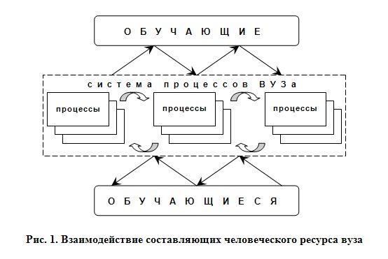 Рис. 1. Взаимодействие составляющих человеческого ресурса вуза