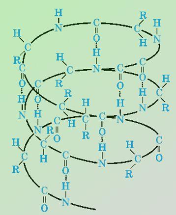 вторичная структура: